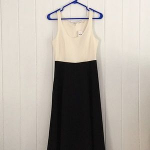 Gap Colorblocked Dress White Top Black Bottom